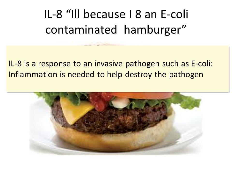 IL-8 Ill because I 8 an E-coli contaminated hamburger