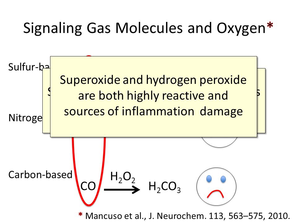 Signaling Gas Molecules and Oxygen*