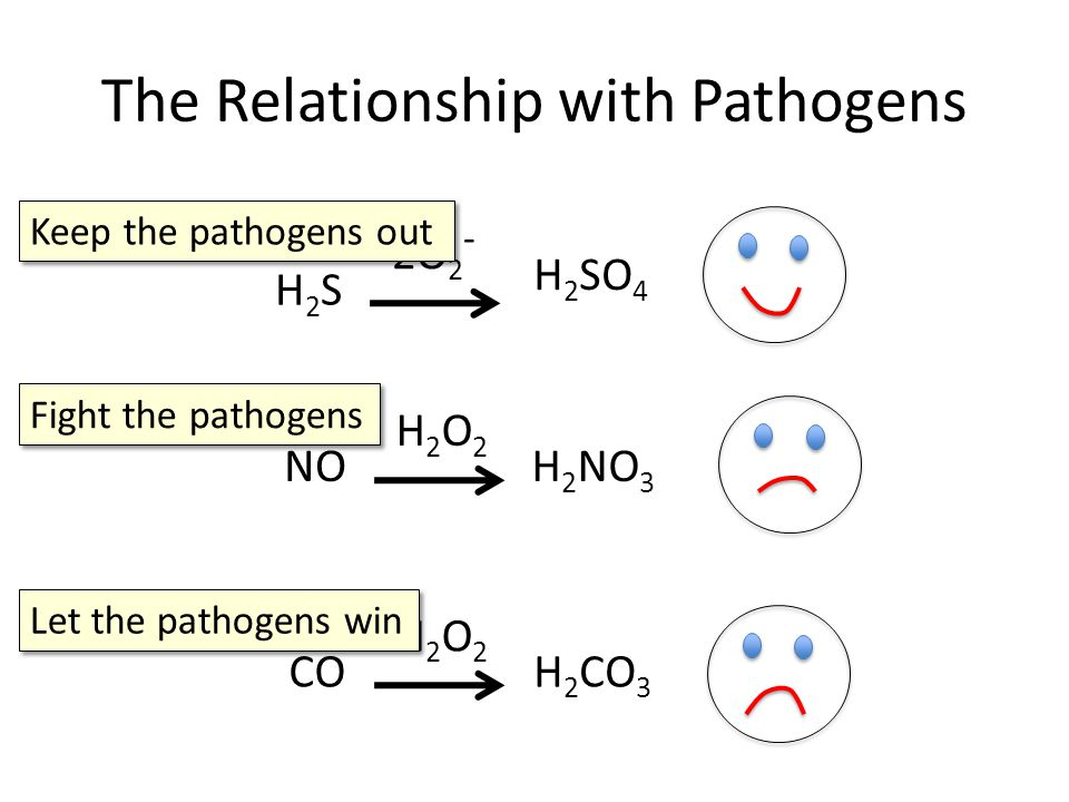The Relationship with Pathogens