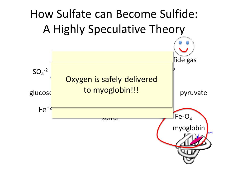 How Sulfate can Become Sulfide: A Highly Speculative Theory