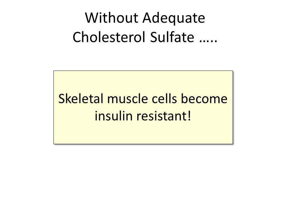 Without Adequate Cholesterol Sulfate …..