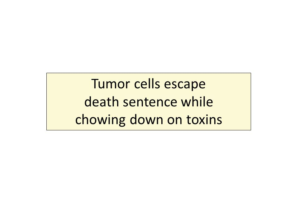 Tumor cells escape death sentence while chowing down on toxins
