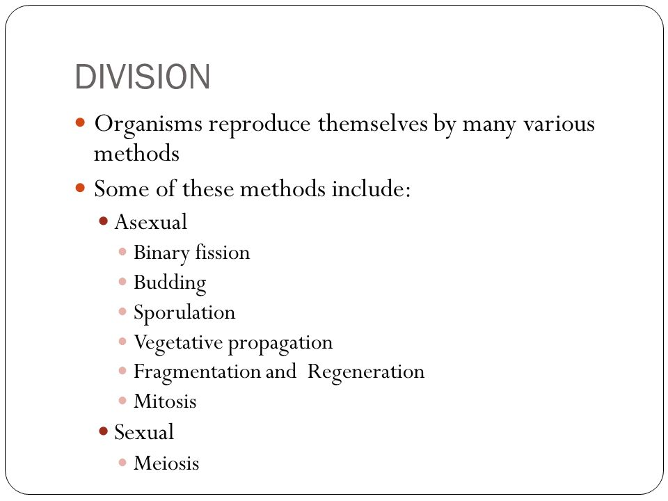 DIVISION Organisms reproduce themselves by many various methods