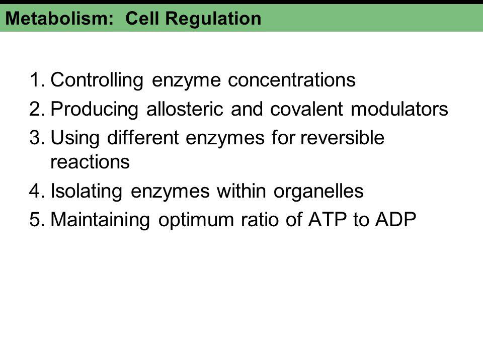 Metabolism: Cell Regulation