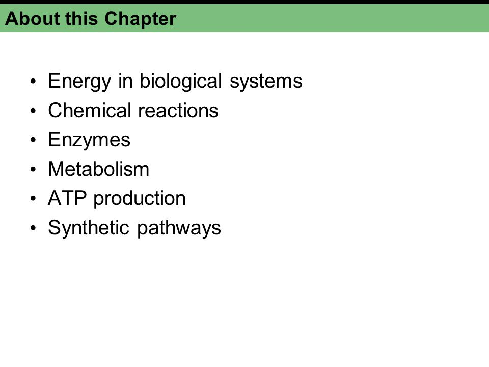 Energy in biological systems Chemical reactions Enzymes Metabolism