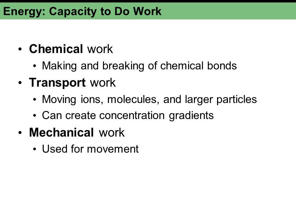 Energy: Capacity to Do Work