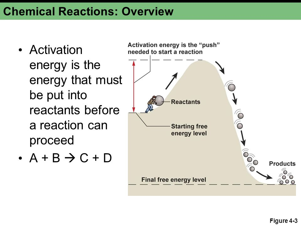 Chemical Reactions: Overview