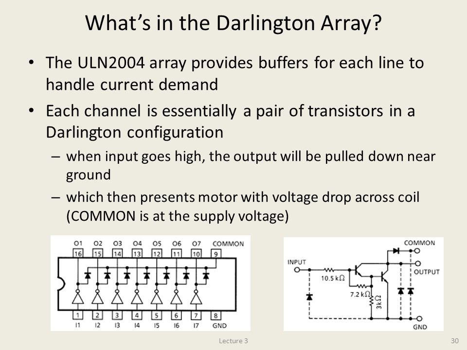 What's in the Darlington Array
