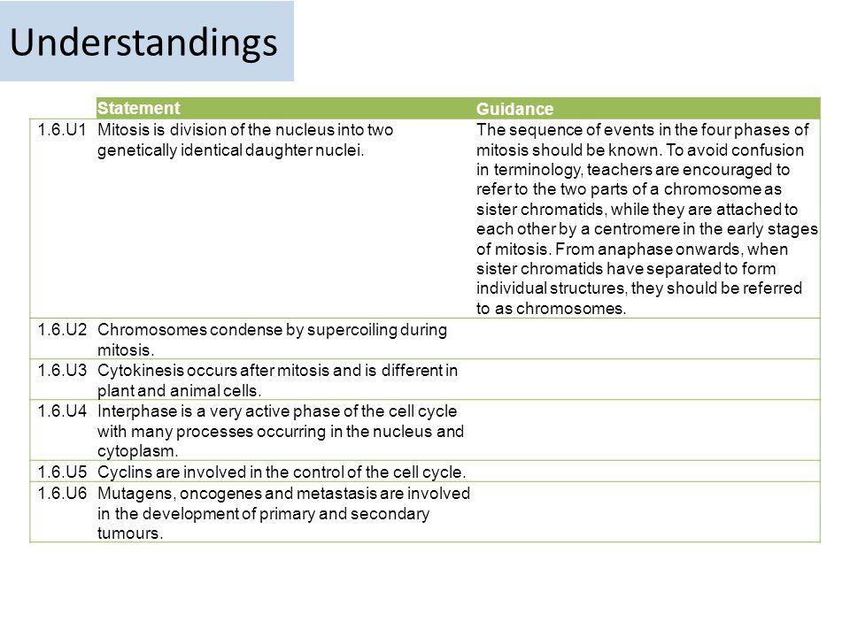 Understandings Statement Guidance 1.6.U1
