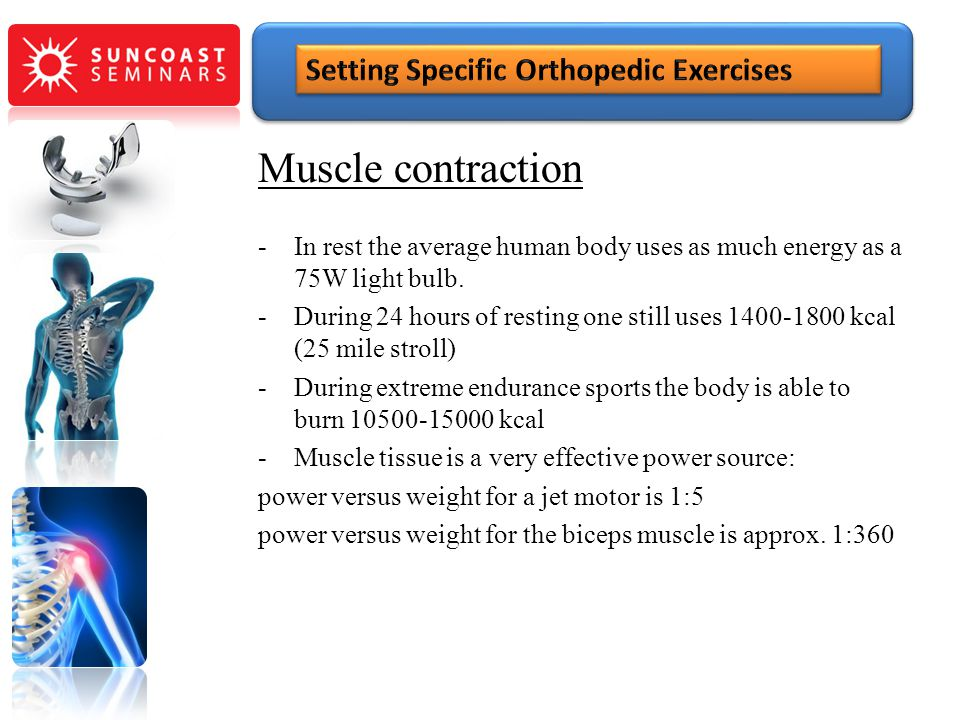 Muscle contraction Setting Specific Orthopedic Exercises