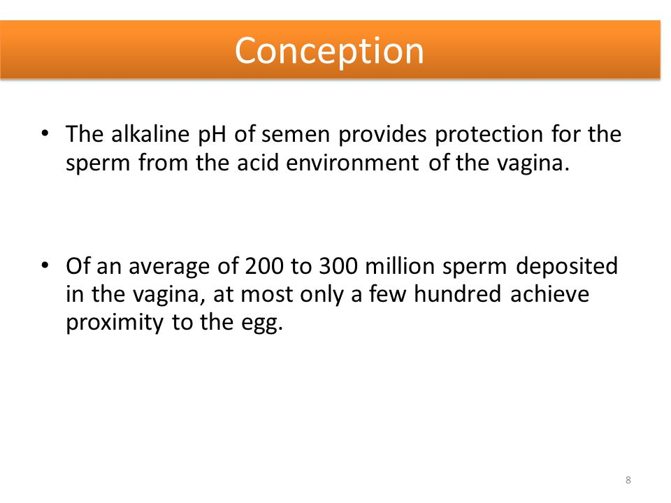 Conception The alkaline pH of semen provides protection for the sperm from the acid environment of the vagina.