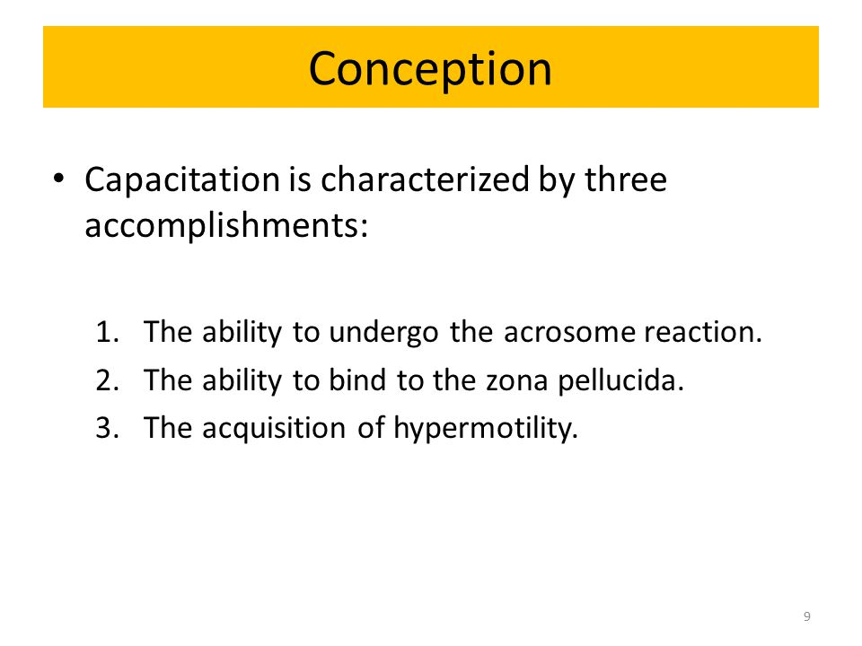 Conception Capacitation is characterized by three accomplishments: