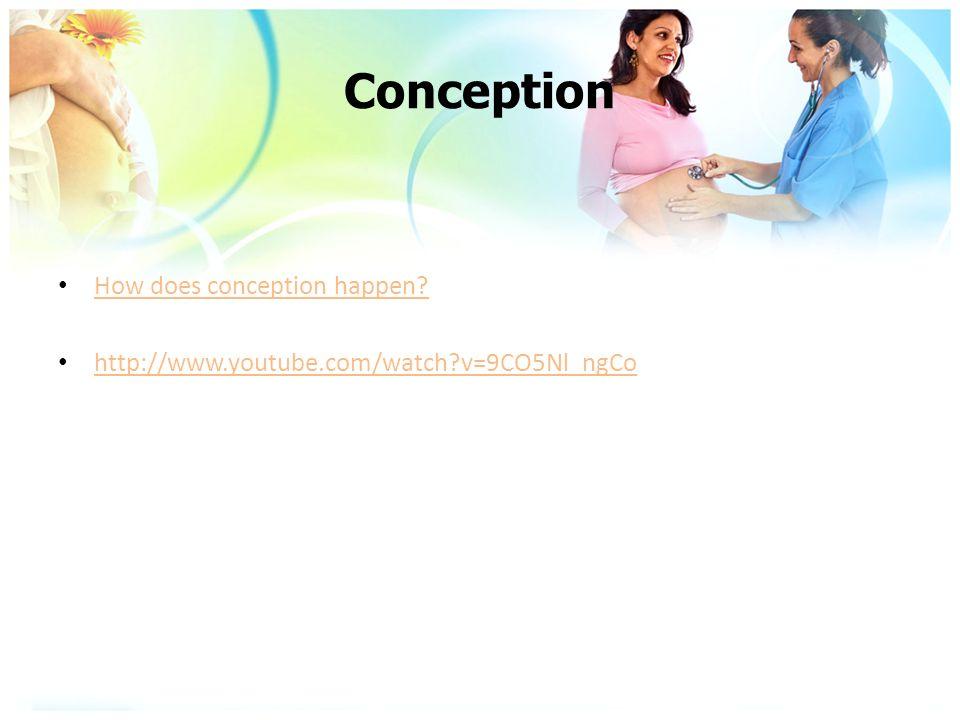 Conception How does conception happen