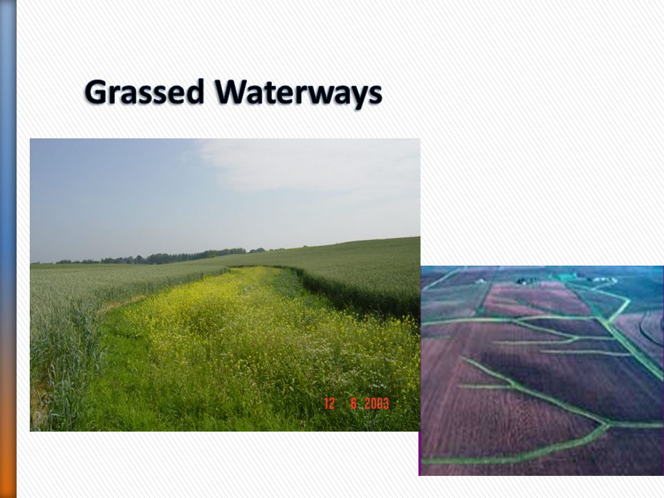 Grassed Waterways