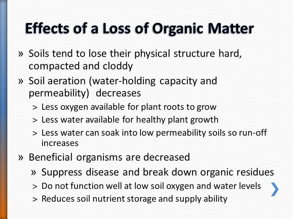 Effects of a Loss of Organic Matter