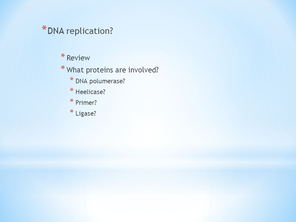 DNA replication Review What proteins are involved DNA polumerase
