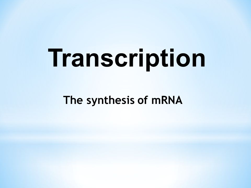 Transcription The synthesis of mRNA