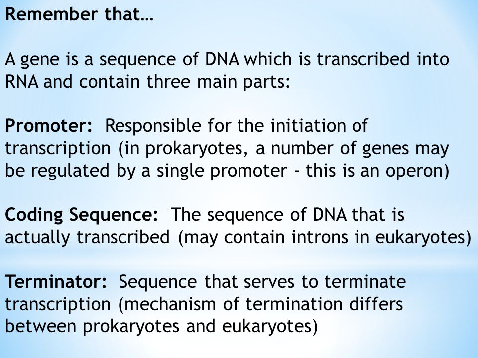 Remember that… A gene is a sequence of DNA which is transcribed into RNA and contain three main parts: