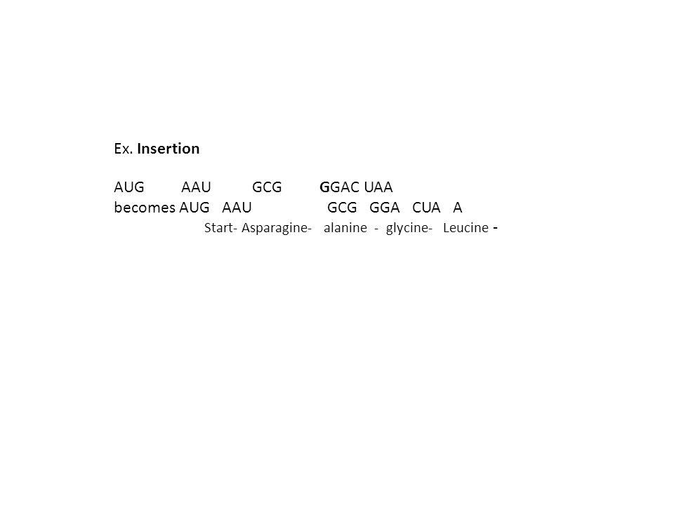 becomes AUG AAU GCG GGA CUA A