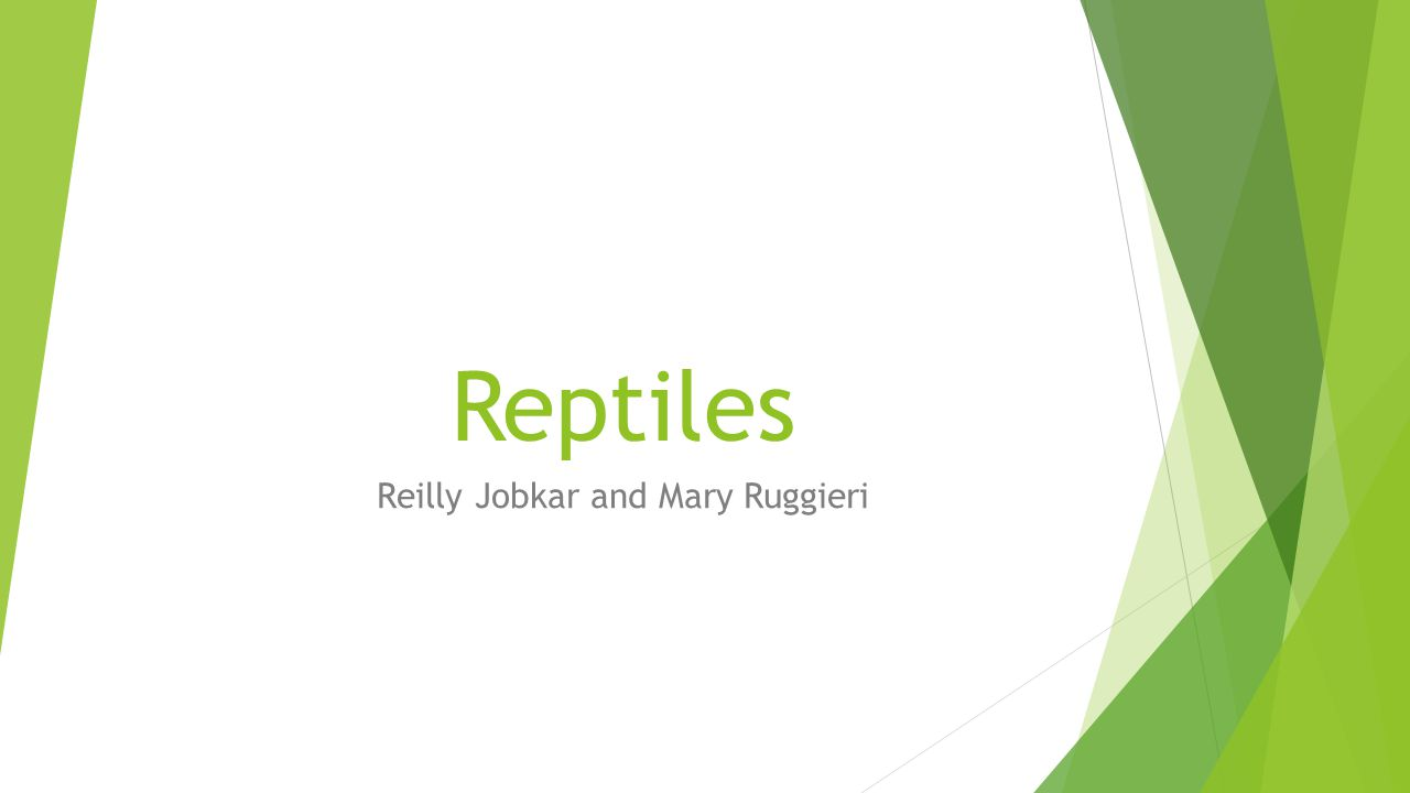Reilly Jobkar and Mary Ruggieri
