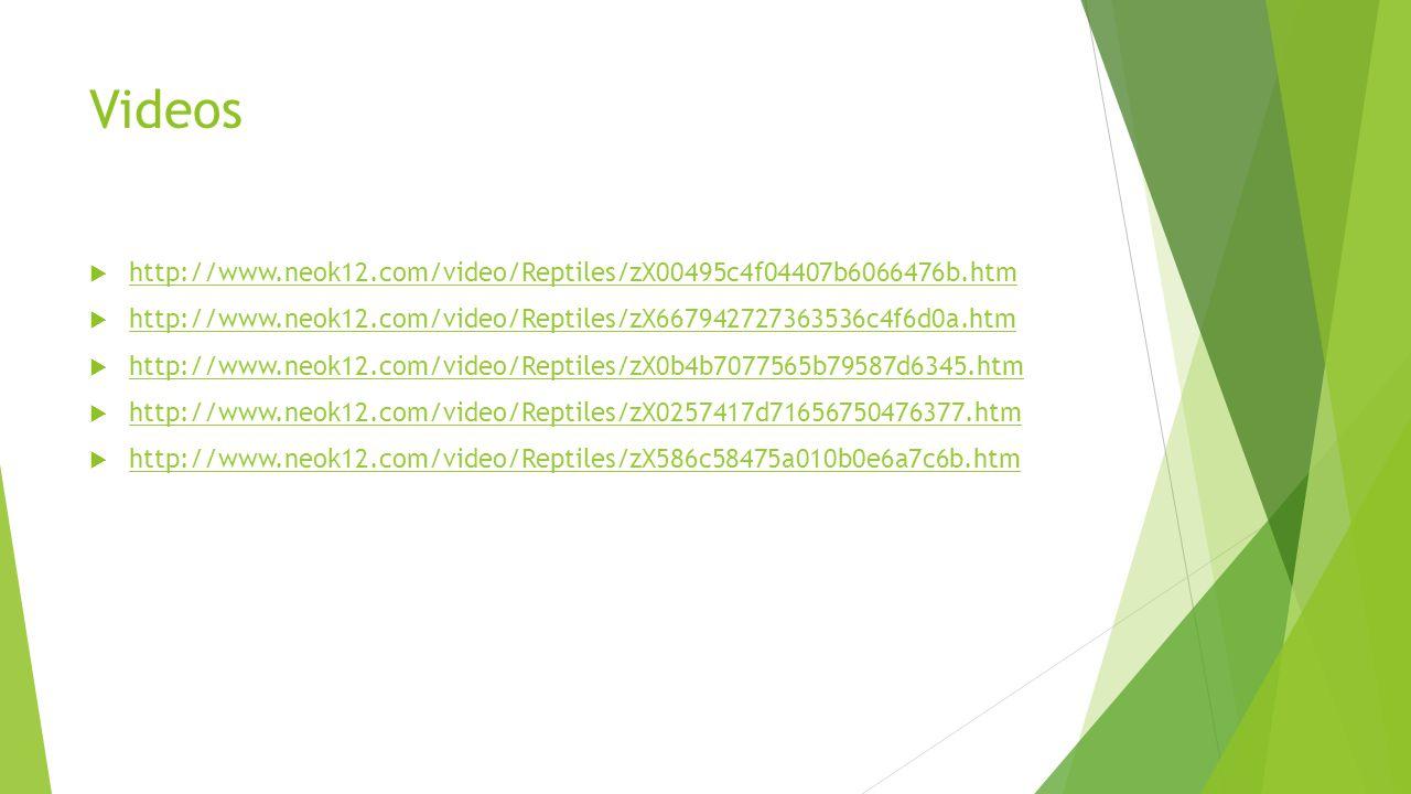 Videos http://www.neok12.com/video/Reptiles/zX00495c4f04407b6066476b.htm. http://www.neok12.com/video/Reptiles/zX667942727363536c4f6d0a.htm.