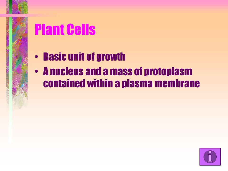 Plant Cells Basic unit of growth