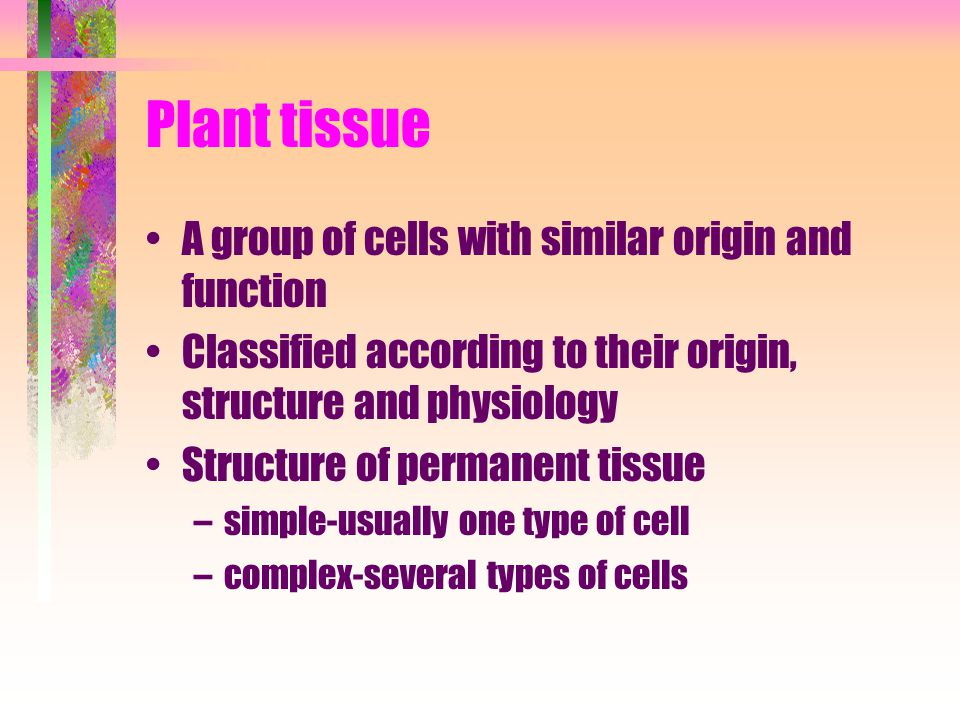 Plant tissue A group of cells with similar origin and function