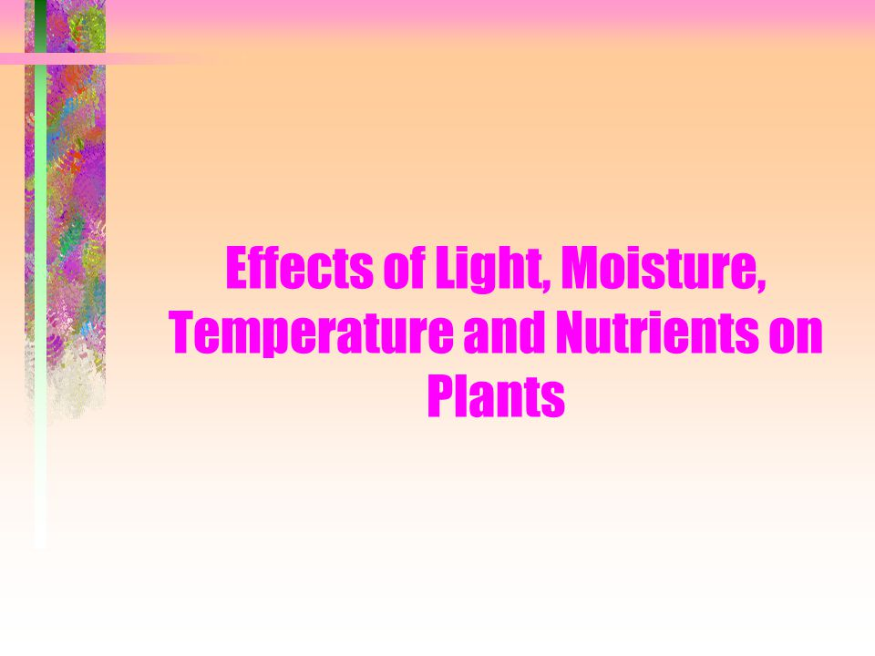 Effects of Light, Moisture, Temperature and Nutrients on Plants