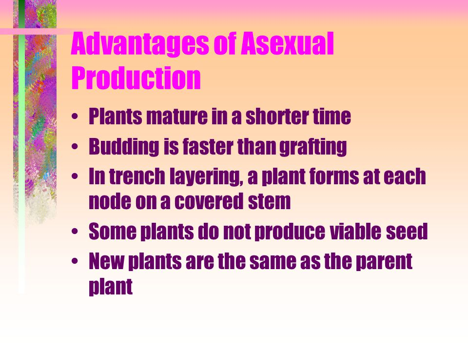 Advantages of Asexual Production