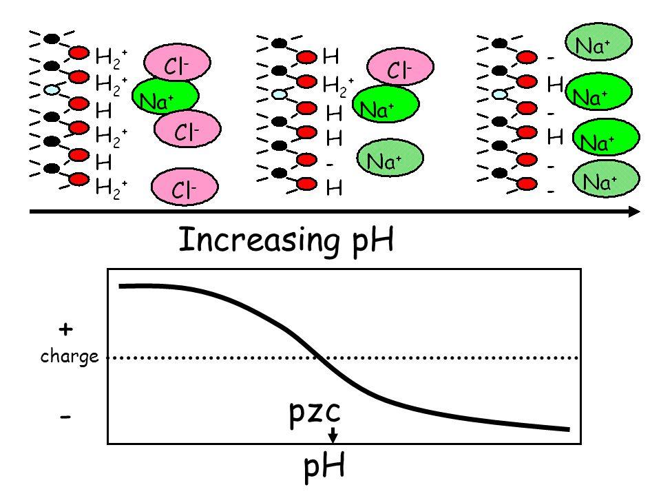 H H2+ - + H+ - H+ - H+ Increasing pH + charge pzc - pH