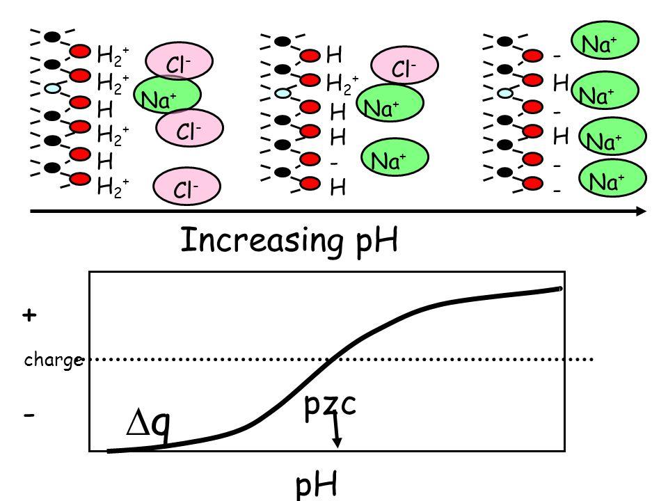 q Increasing pH + pzc - pH Na+ H2+ Cl- H - Cl- H2+ H2+ H Na+ Na+ Na+