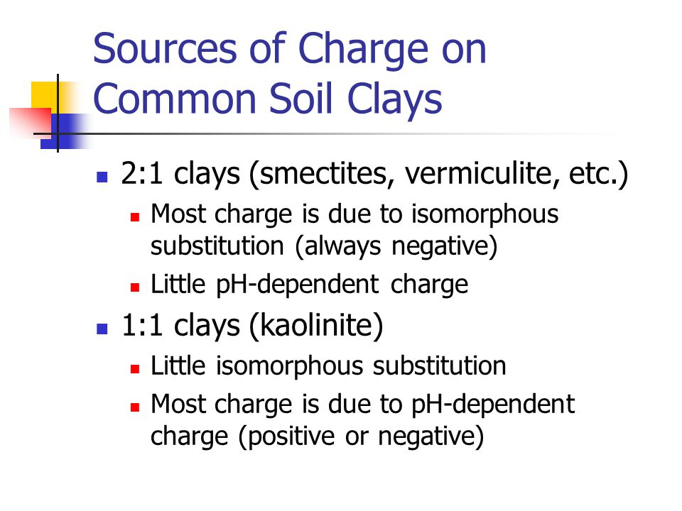 Sources of Charge on Common Soil Clays