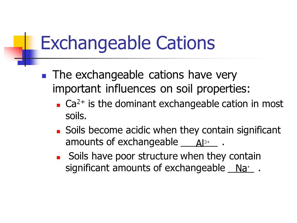 Exchangeable Cations The exchangeable cations have very important influences on soil properties: