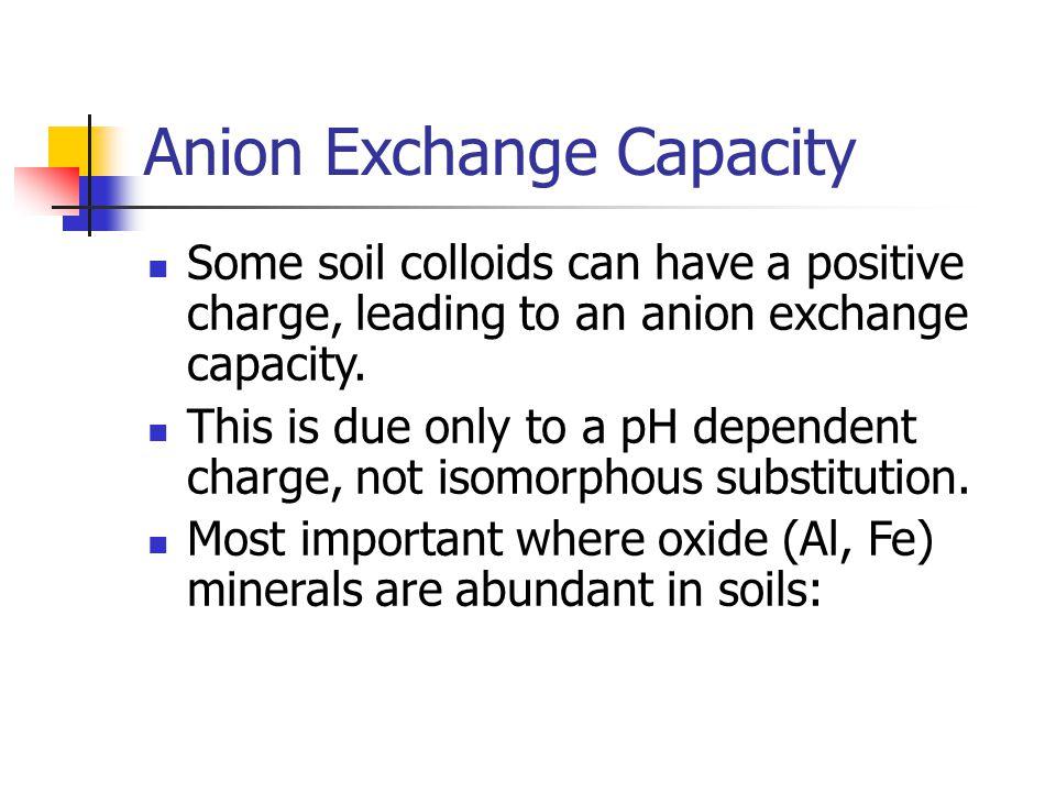 Anion Exchange Capacity