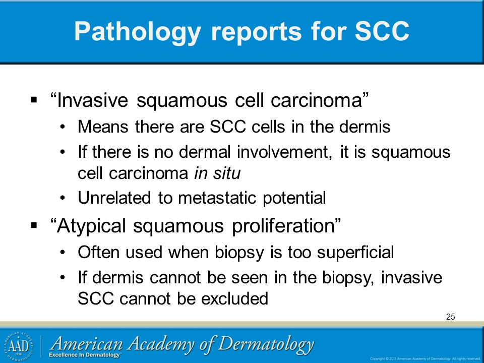 Pathology reports for SCC