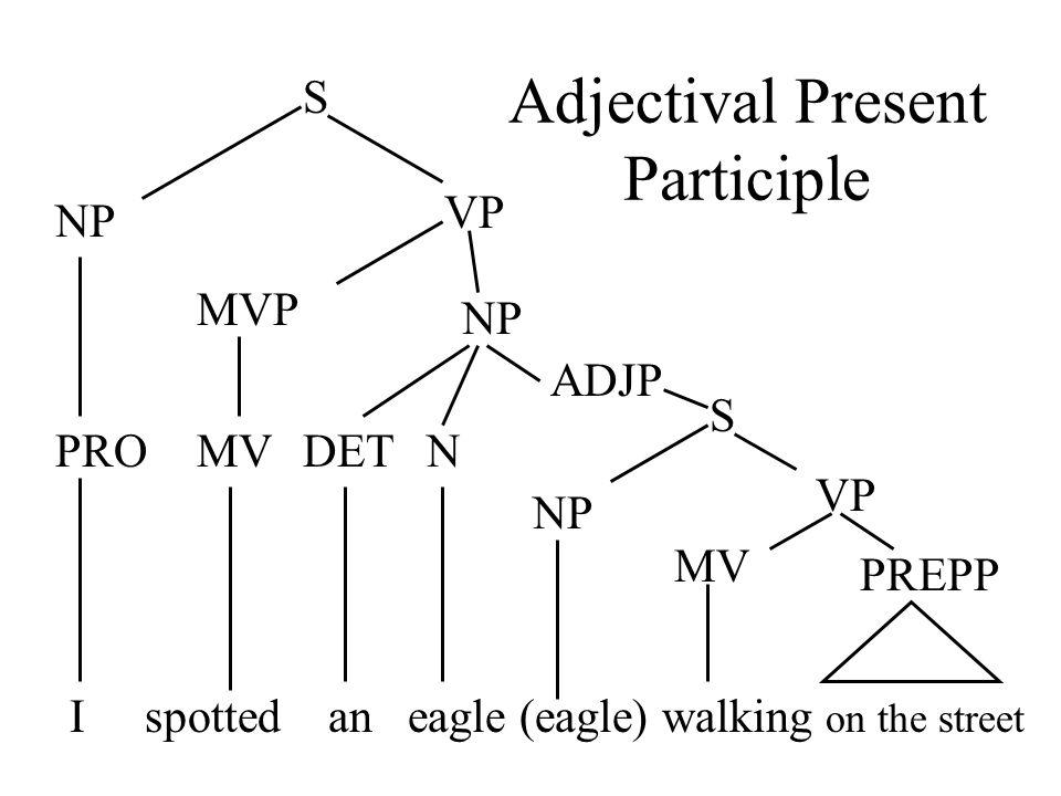 Adjectival Present Participle