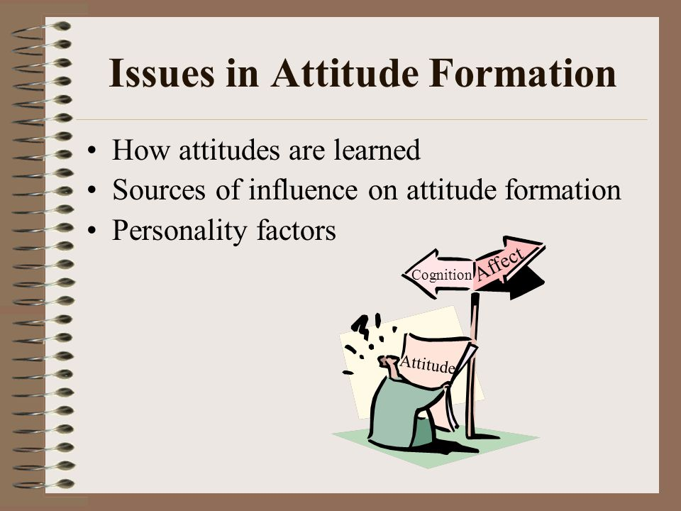 Issues in Attitude Formation