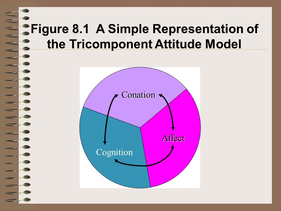 Figure 8.1 A Simple Representation of the Tricomponent Attitude Model