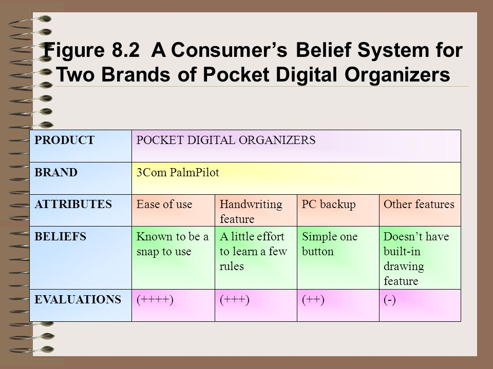 Figure 8.2 A Consumer's Belief System for Two Brands of Pocket Digital Organizers