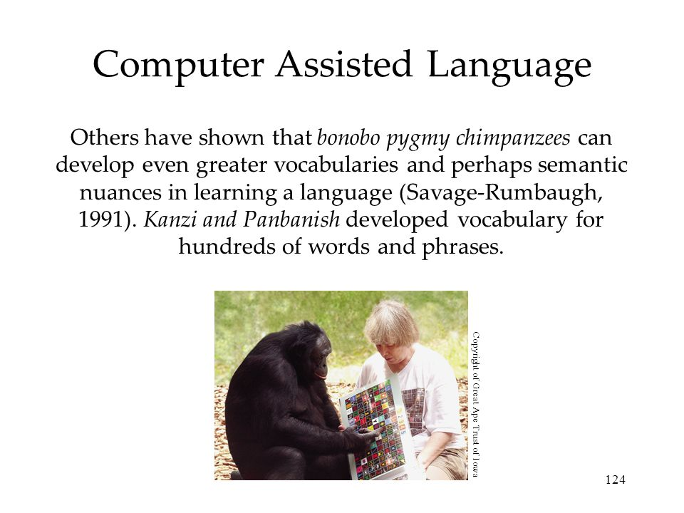 Computer Assisted Language
