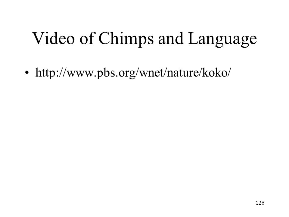 Video of Chimps and Language
