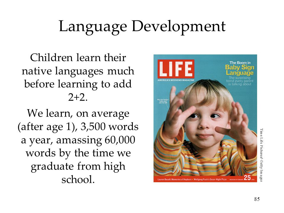 Children learn their native languages much before learning to add 2+2.