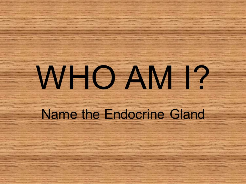 Name the Endocrine Gland