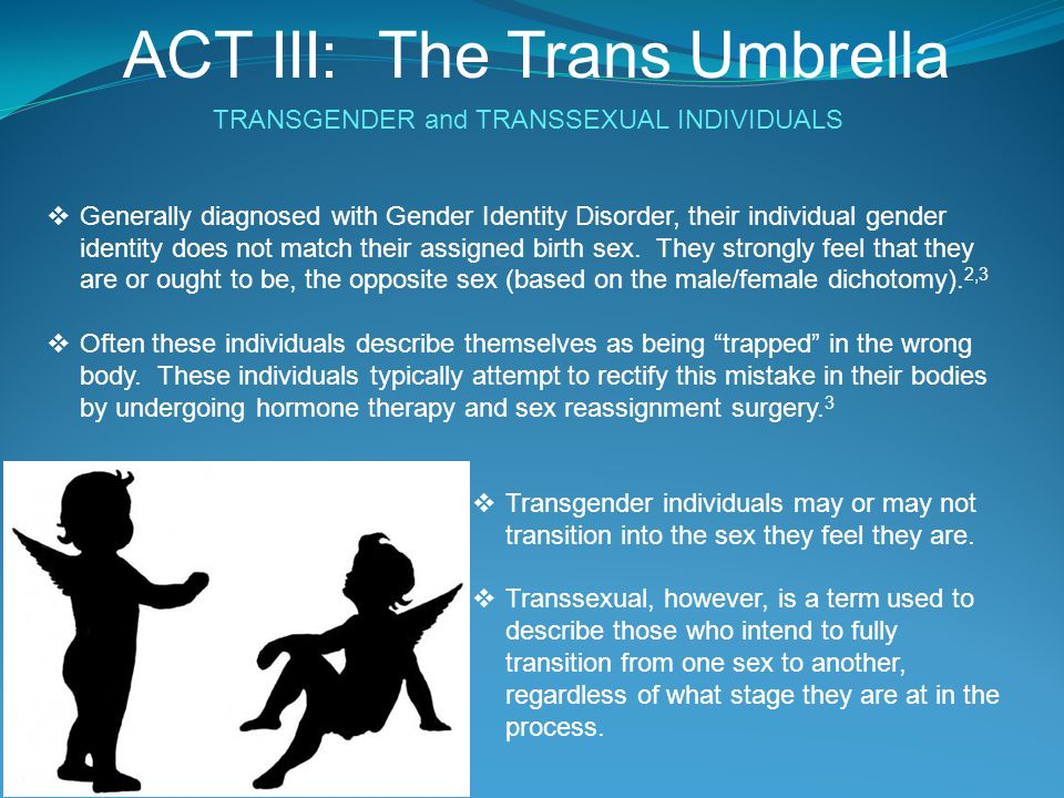ACT III: The Trans Umbrella