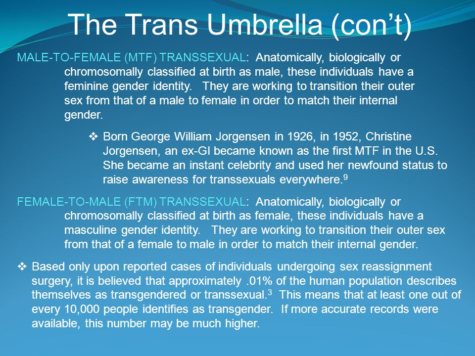 The Trans Umbrella (con't)