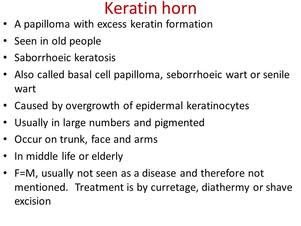 Keratin horn A papilloma with excess keratin formation