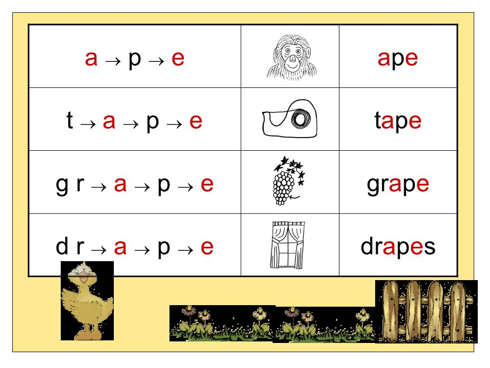 a  p  e ape t  a  p  e tape g r  a  p  e grape d r  a  p  e drapes