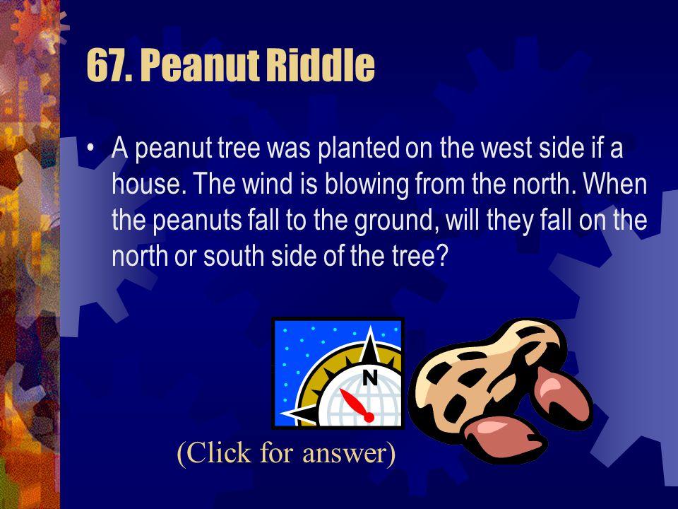 67. Peanut Riddle