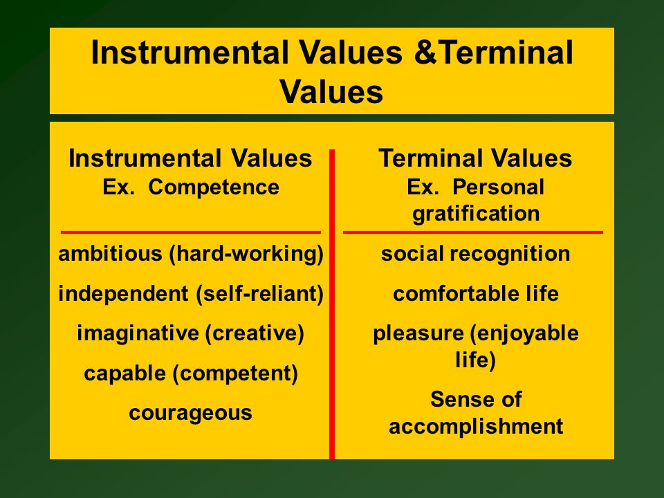 terminal and instrumental values - terminal values signify what an organization and its employees are trying to accomplish, and instrumental values guide how the organization and its members achieve organizational goals.