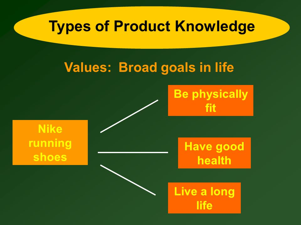 Types of Product Knowledge Values: Broad goals in life